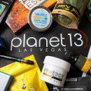 Planet 13