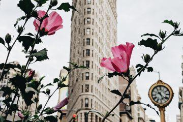 new york city beauty jobs