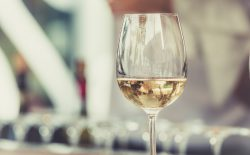 wine certifications benefits