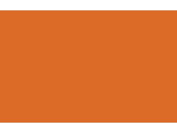 Caribe Juice logo