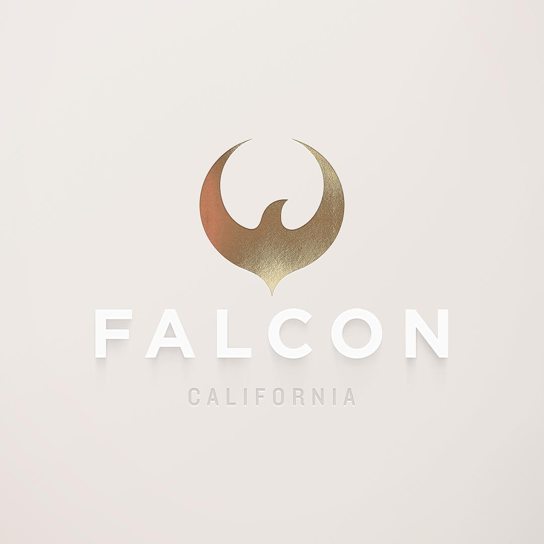 Falconstory square