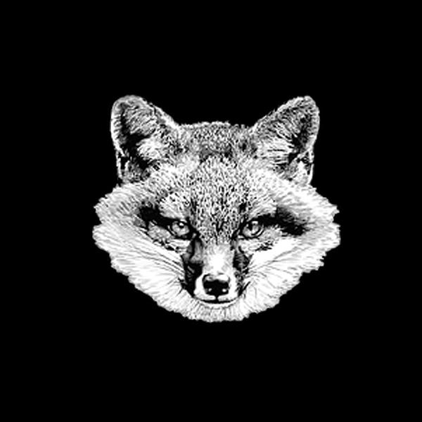The vale fox distiller 1