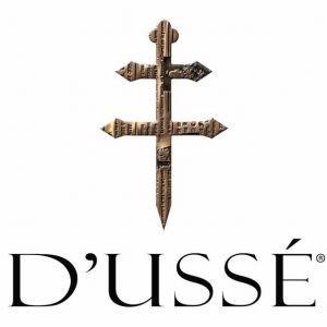 Dusse logo